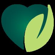Holunderblütensirup - Simply Vegan